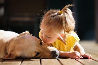 Child kissing dog