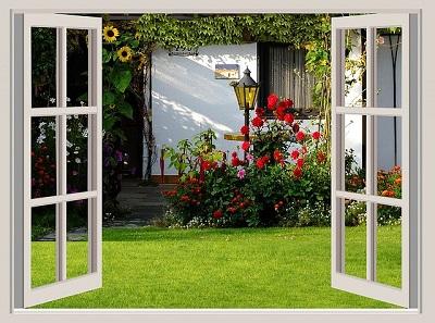 Open window with backyard view