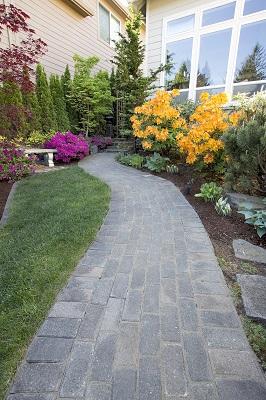 walkway with flowers