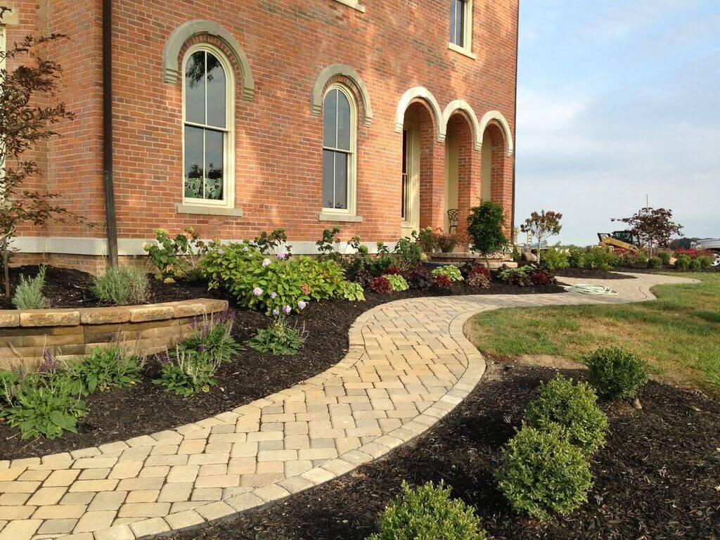 walkway with plants