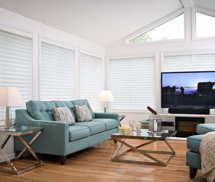 Sunroom with TV and green couch